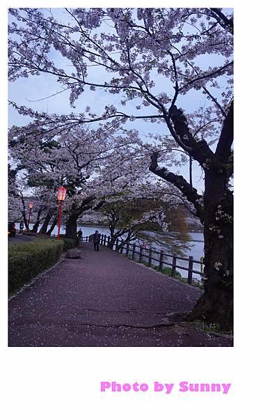 高松之池21.jpg