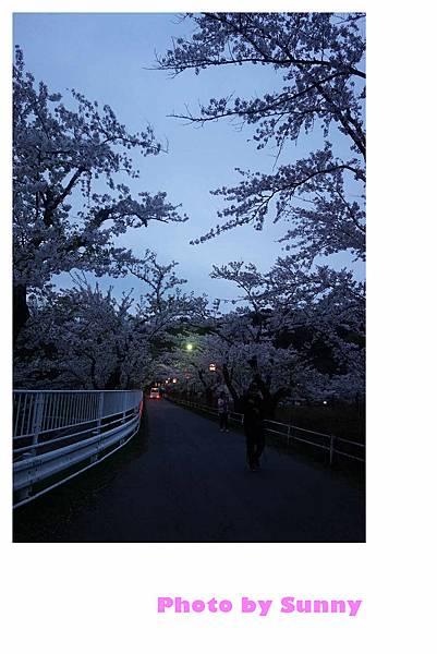 高松之池22.jpg