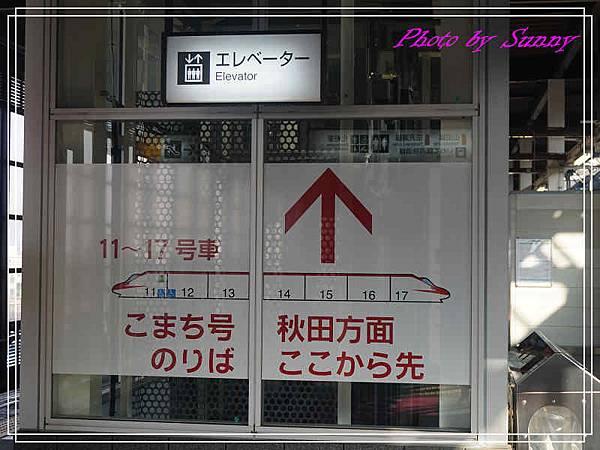 角館檜木內川2.jpg