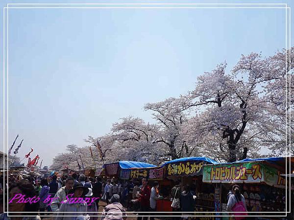 角館檜木內川41.jpg