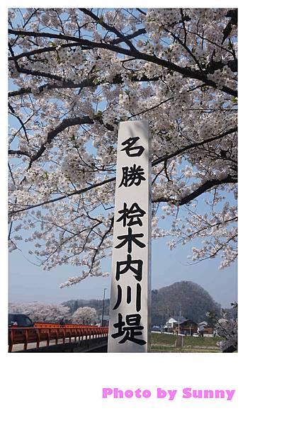 角館檜木內川47.jpg