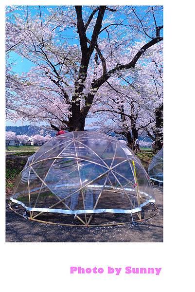角館檜木內川53.jpg