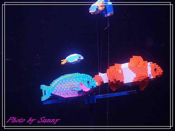 LEGO水族館2.jpg