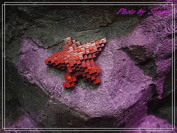 LEGO水族館9.jpg