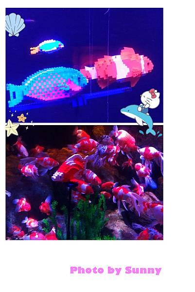 LEGO水族館21.jpg