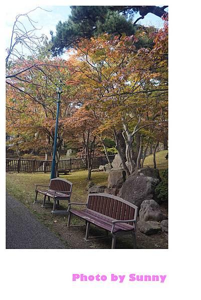 函館公園23.jpg