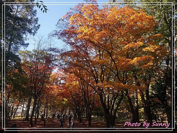 香雪園5.jpg