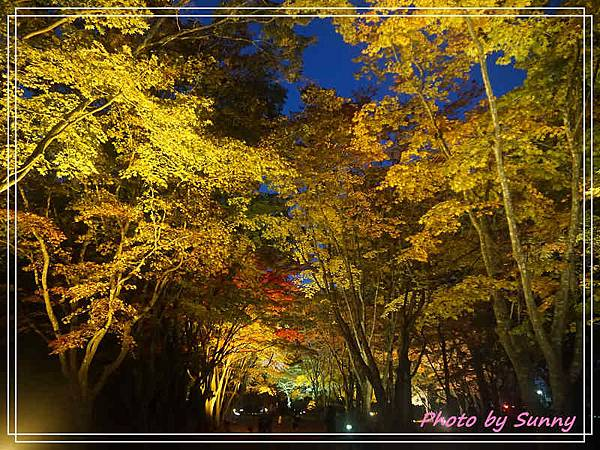 香雪園28.jpg