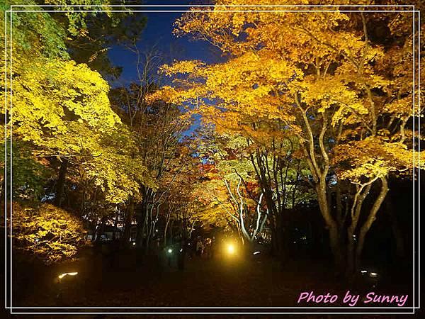 香雪園31.jpg