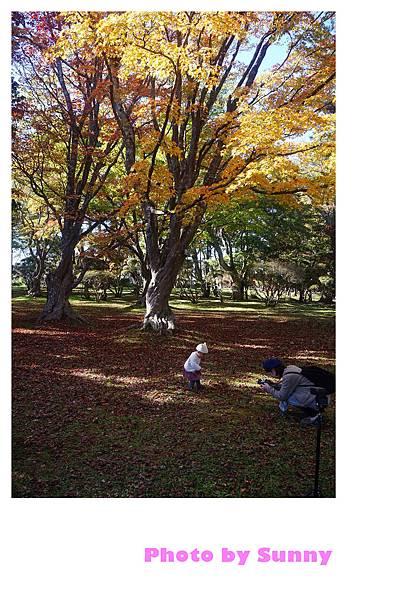 香雪園42.jpg