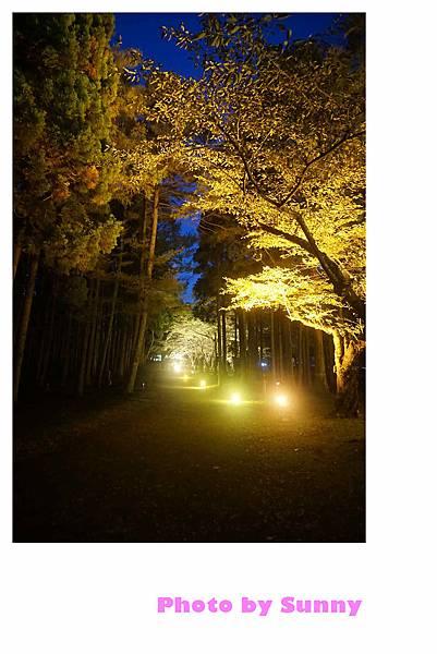 香雪園49.jpg