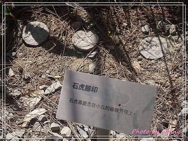 台中花博后里園區4.jpg