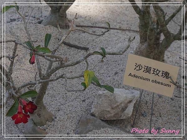 台中花博后里園區17.jpg