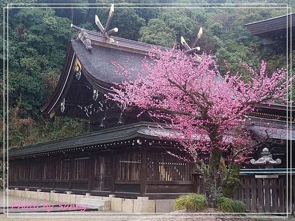 吉備津彥神社14.jpg