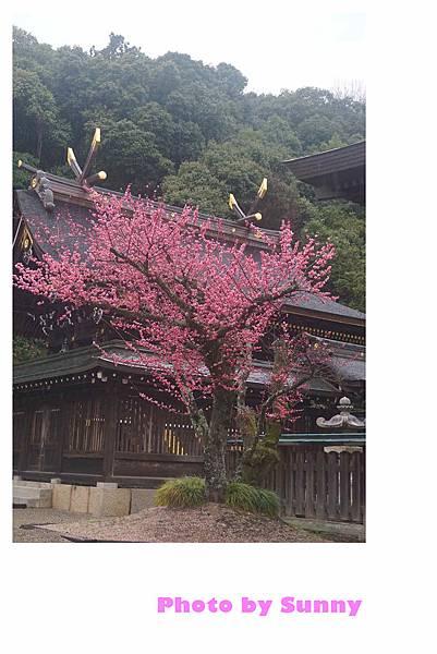 吉備津彥神社30.jpg