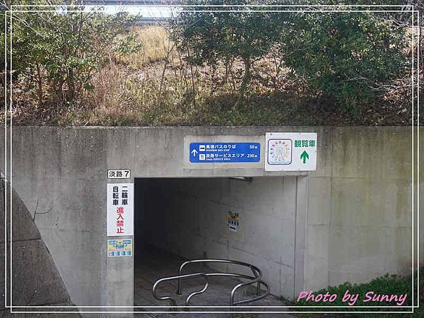 淡路島kitty4.jpg