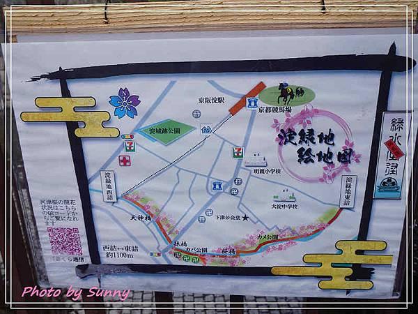 淀水路河津櫻17.jpg