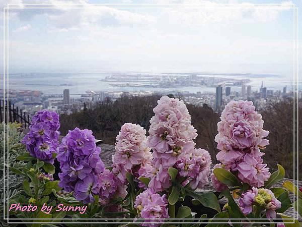 神戶布引香草園16.jpg