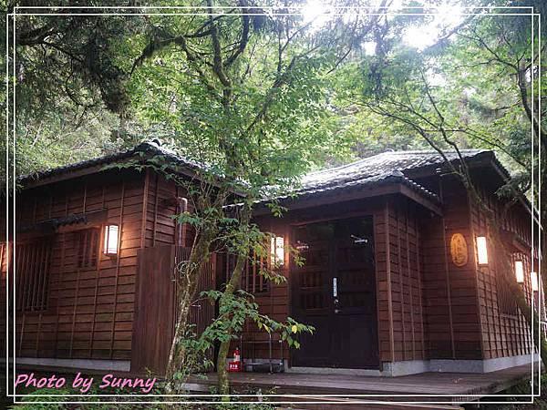 檜木原始林步道4.jpg