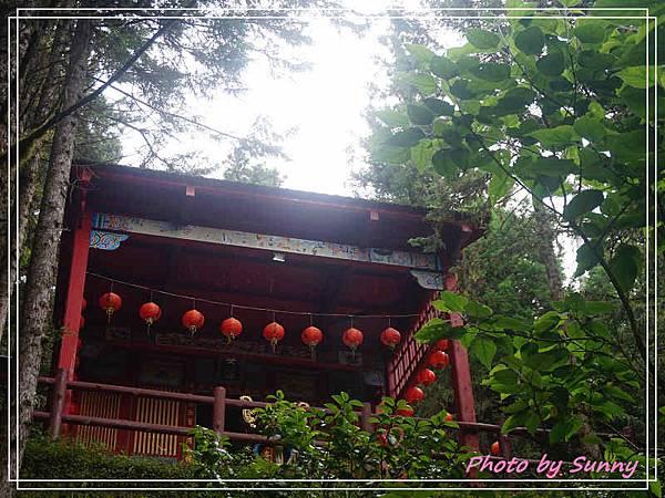 檜木原始林步道5.jpg