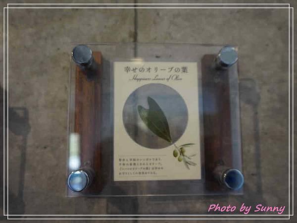 小豆島橄欖園13.jpg