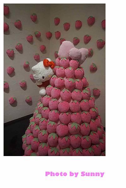 今治毛巾美術館kitty展41.jpg