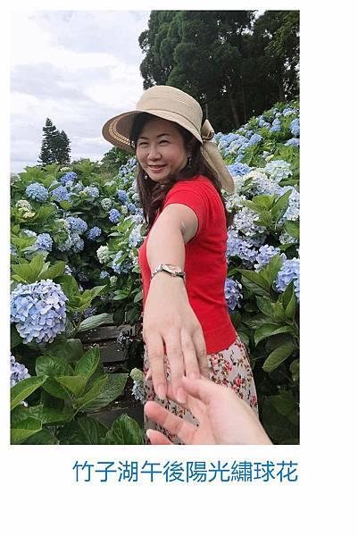 午後陽光繡球花17.jpg