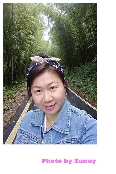 瑞里竹林綠色隧道2.jpg