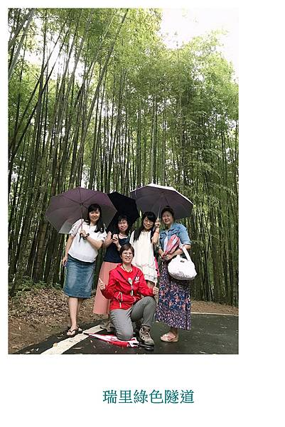 瑞里竹林綠色隧道7.jpg