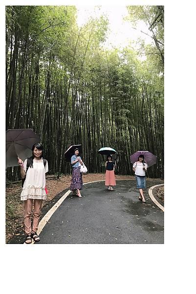 瑞里竹林綠色隧道9.jpg