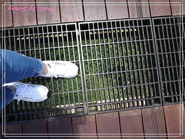太平雲梯11.jpg