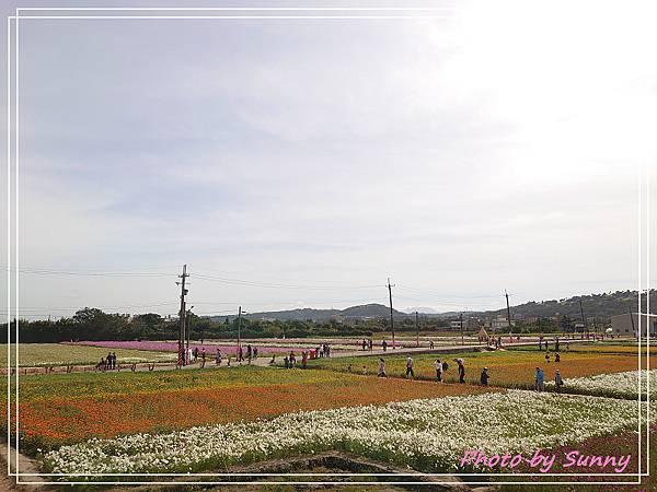 桃園花彩節12.jpg