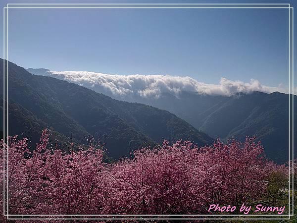 拉拉山觀雲農莊4.jpg