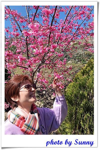 拉拉山楓墅民宿4.jpg