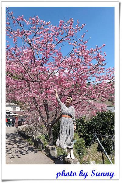 中巴陵櫻木花道3.jpg