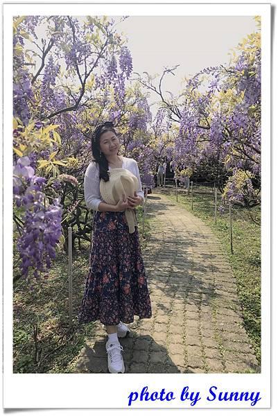 紫藤園屯山園區15.jpg