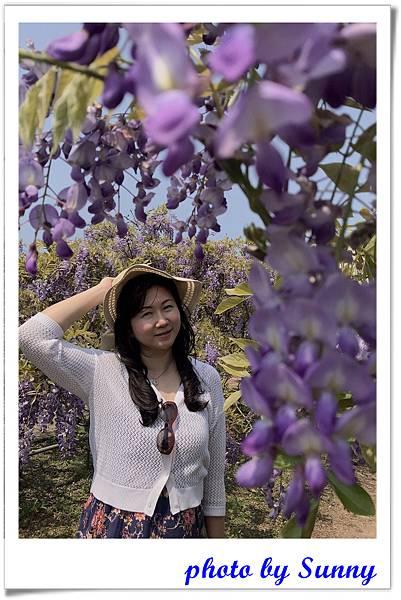 紫藤園屯山園區18.jpg