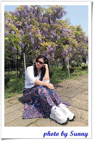 紫藤園屯山園區24.jpg