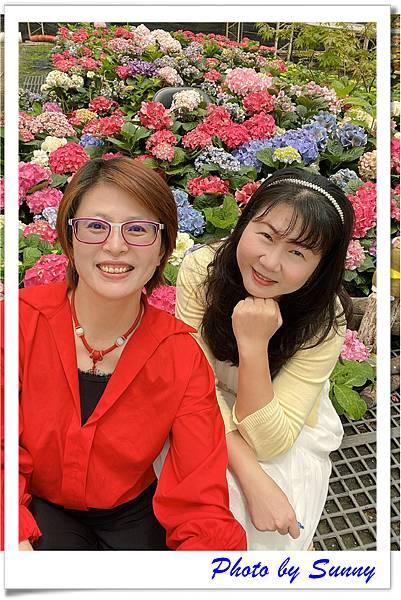 中興花卉農場6.jpg