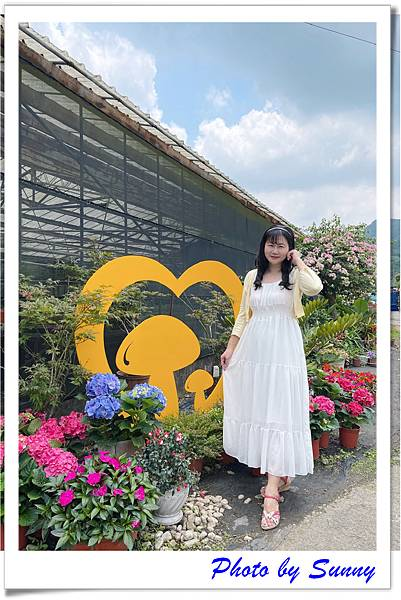 中興花卉農場9.jpg