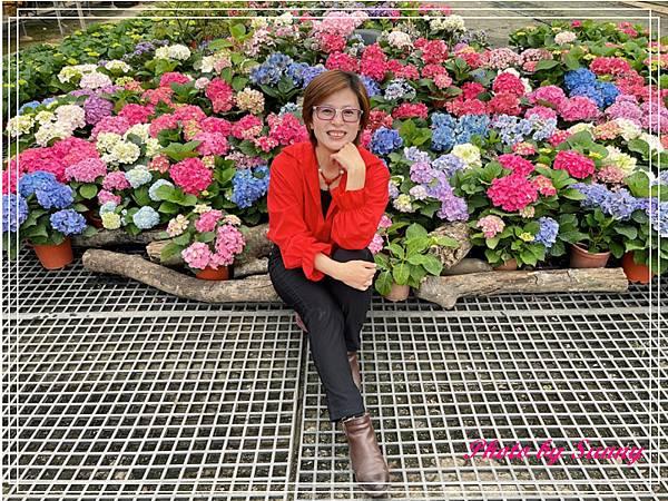 中興花卉農場19.jpg