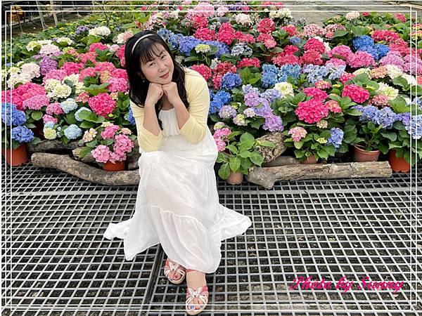 中興花卉農場20.jpg