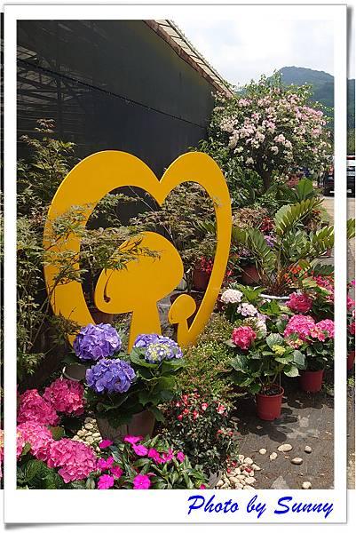 中興花卉農場18.jpg