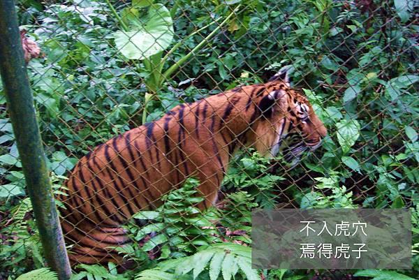 200705092LuangProbang (61)