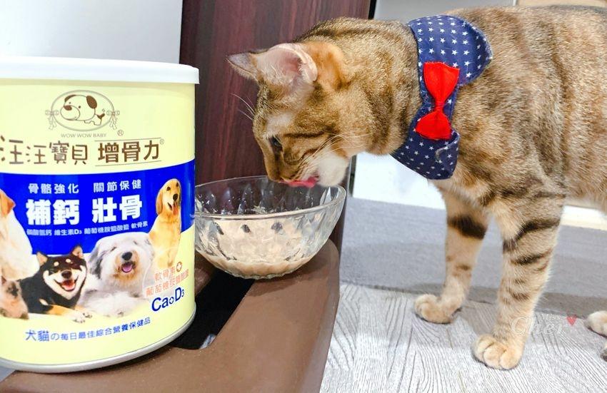 貓營養品推薦_汪汪寶貝_5629_结果.jpg