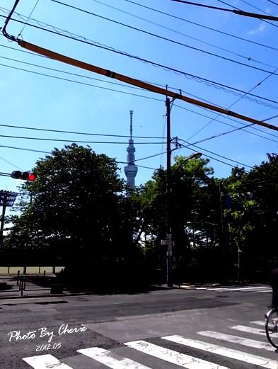 20120523天空樹002