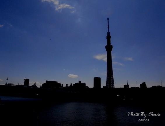 20120523天空樹009