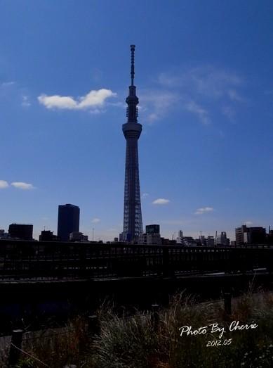 20120523天空樹031