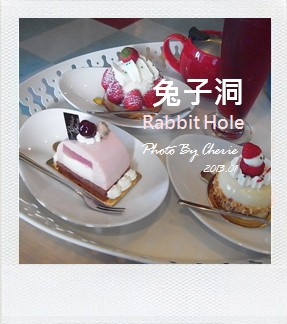 兔子洞000
