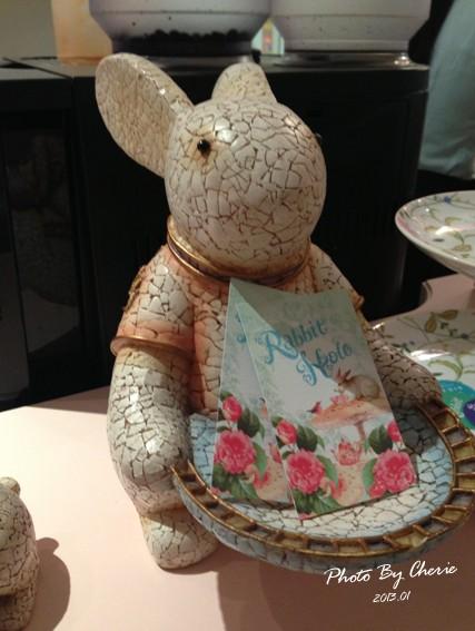 兔子洞006